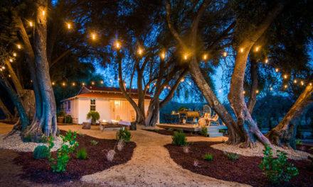 Stay Here: No vas a volver a ver Airbnb de la misma manera