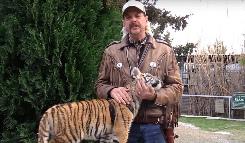 10 datos post Rey Tigre que te van a hacer decir: WTF!
